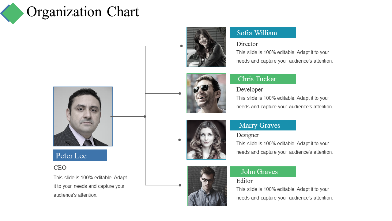Organization Chart PPT Summary Slide