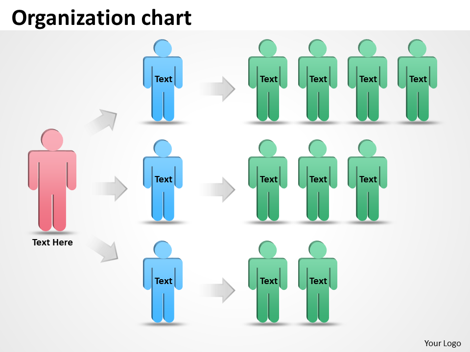 Organization staff chart 48