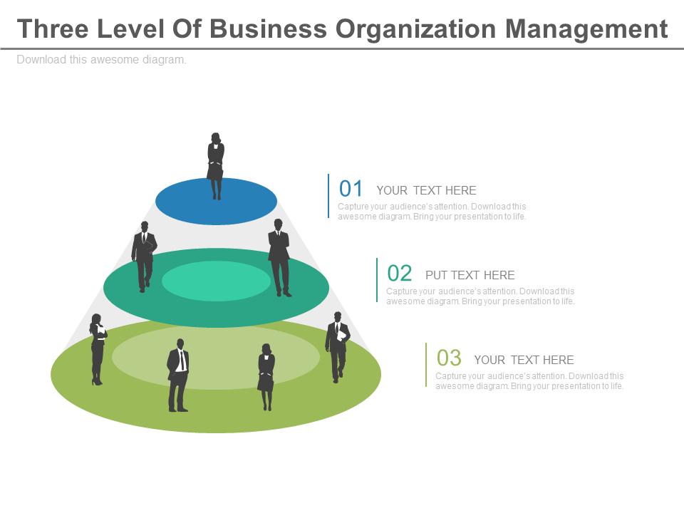 Three Level Of Business Organization Management PowerPoint Slides