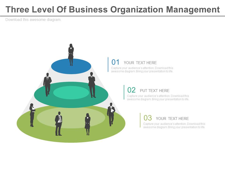 Three Level Of Business Organization Management PowerPoint Slides