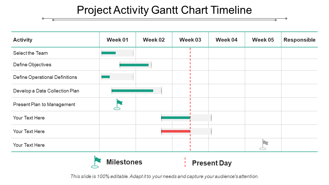 Project Activity Gantt Chart Timeline PPT Slide