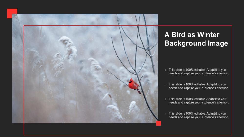 A Bird As Winter Background