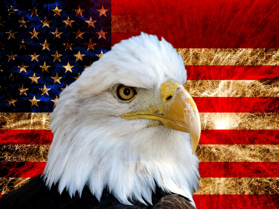 America Flag And Eagle
