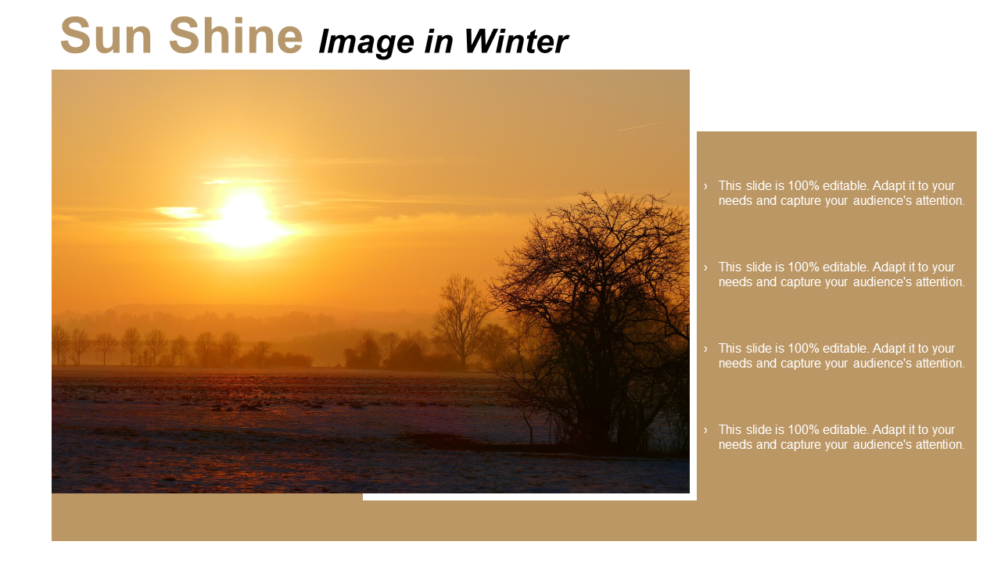 Sun Shine Image In Winter