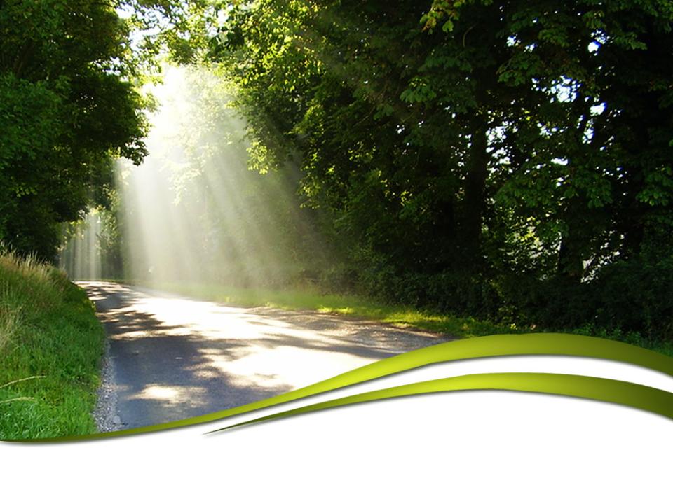 Sunlight Nature PowerPoint Template 1
