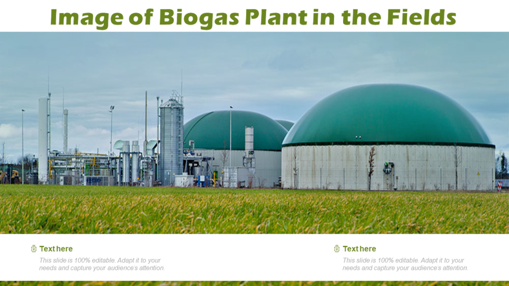 Biogas Plant In The Fields