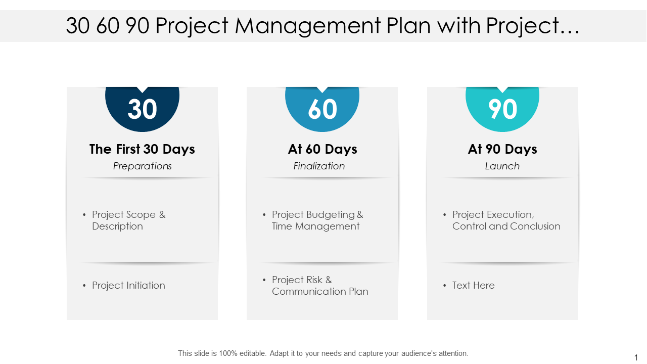 30-60-90 Project Management Plan With Project Scope And Description