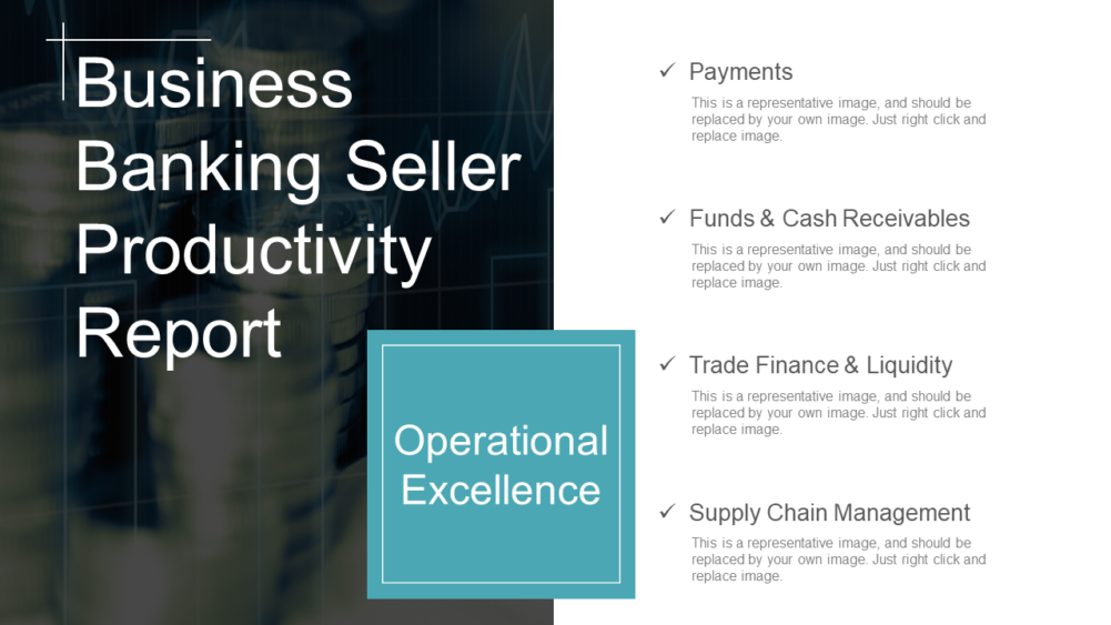 Banking Seller Productivity Report