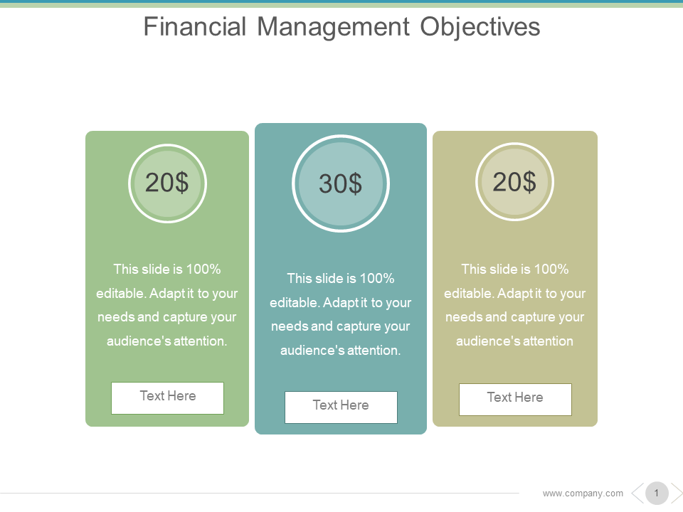 Financial Management Objectives PowerPoint Templates