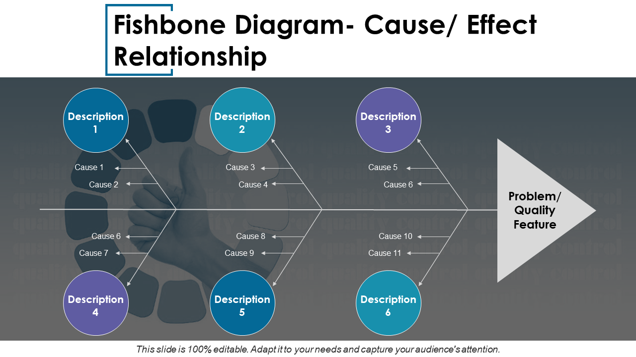 Fishbone Diagram Cause Effect Relationship PPT