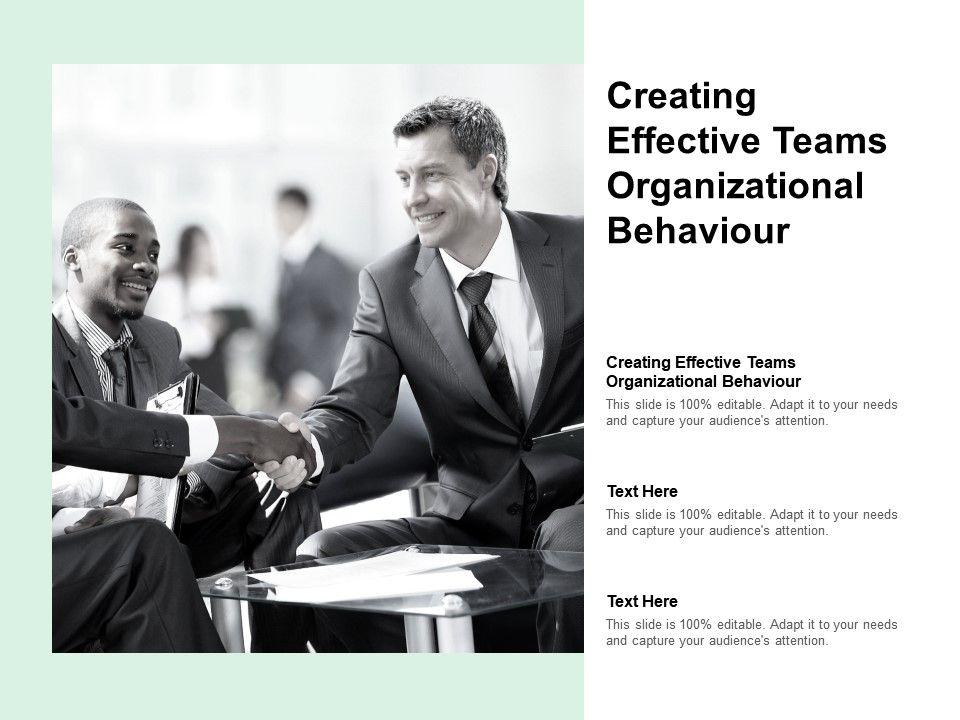 Organizational Behavior Template 1