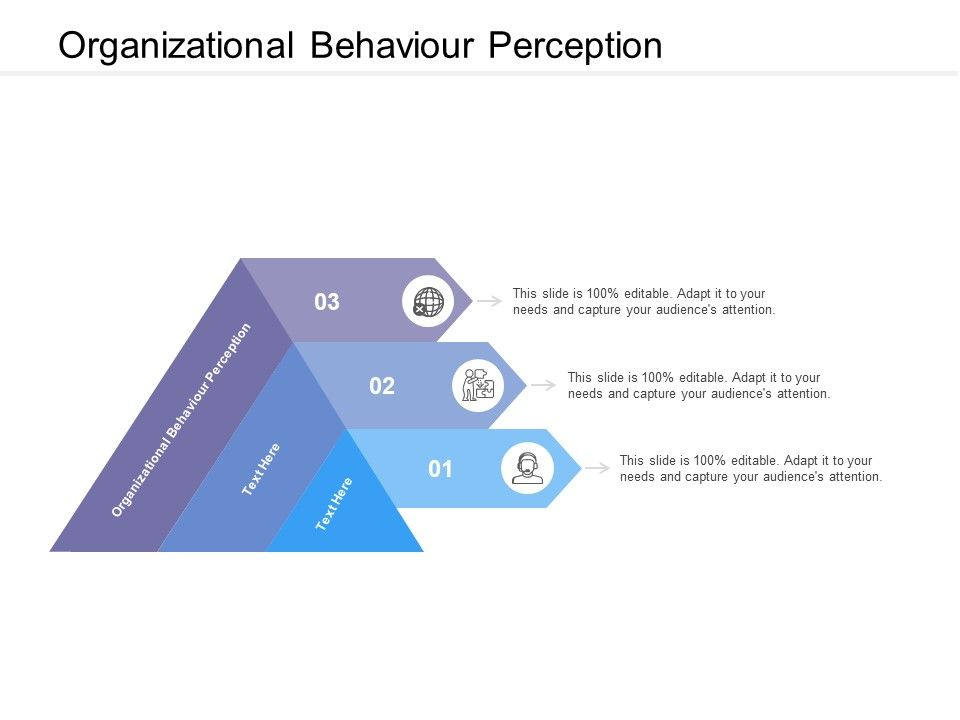 Organizational Behavior Template 13