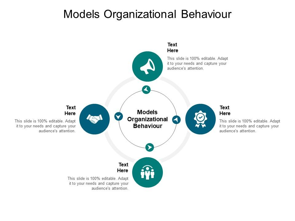 Organizational Behavior Template 14