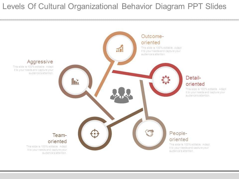 Organizational Behavior Template 17
