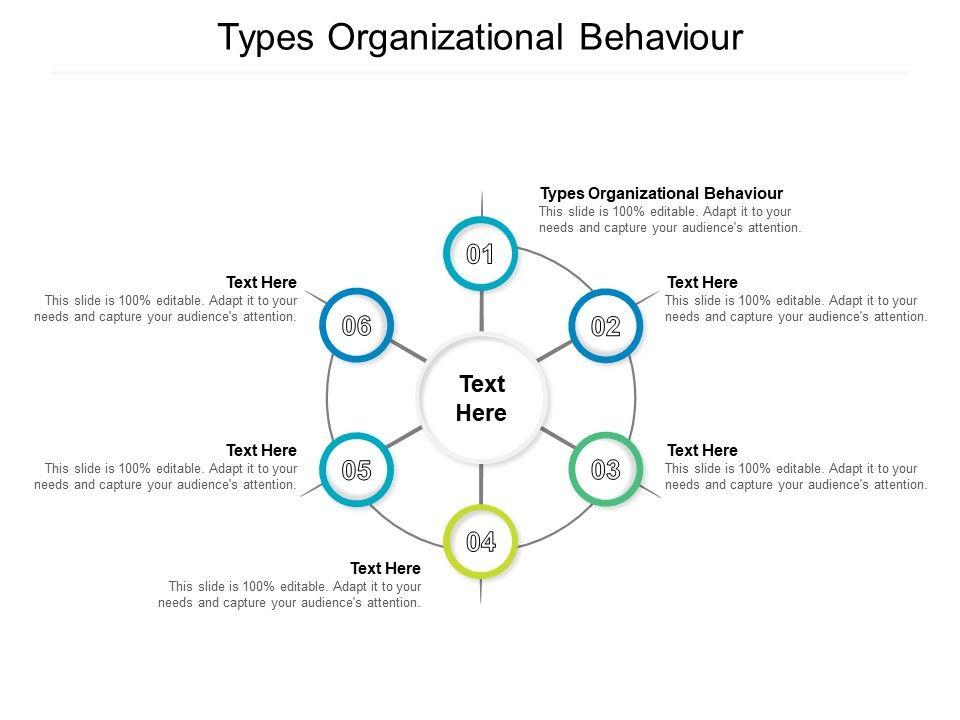 Organizational Behavior Template 7