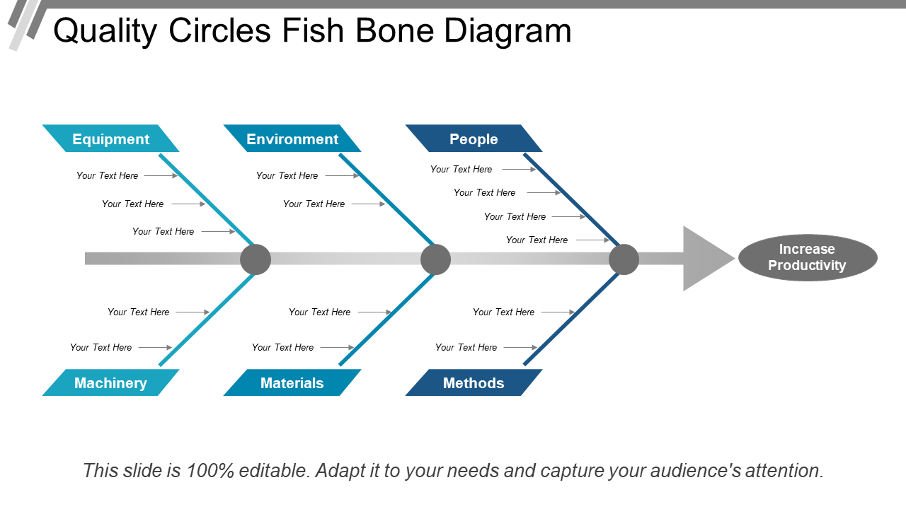 Quality Circles Fish Bone Diagram