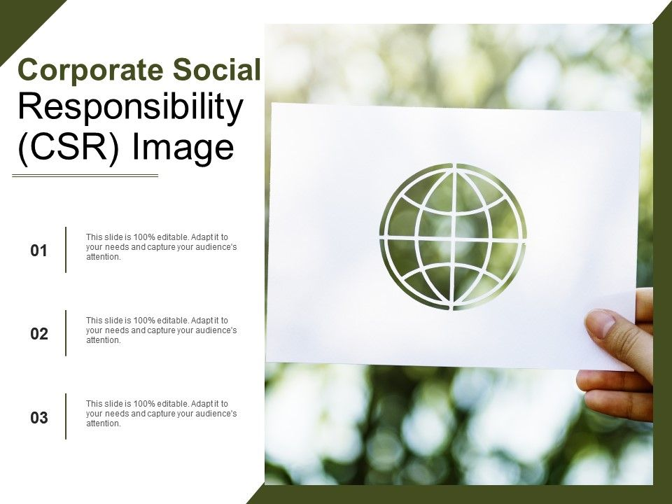 Social Responsibility Template 8