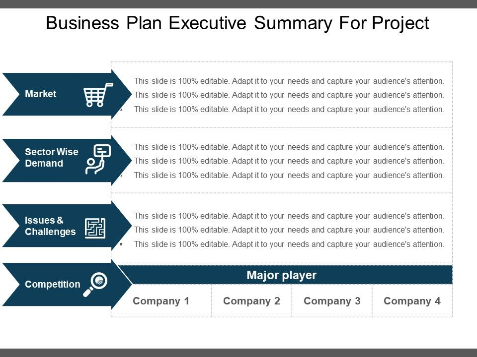 Executive Summary Template 17