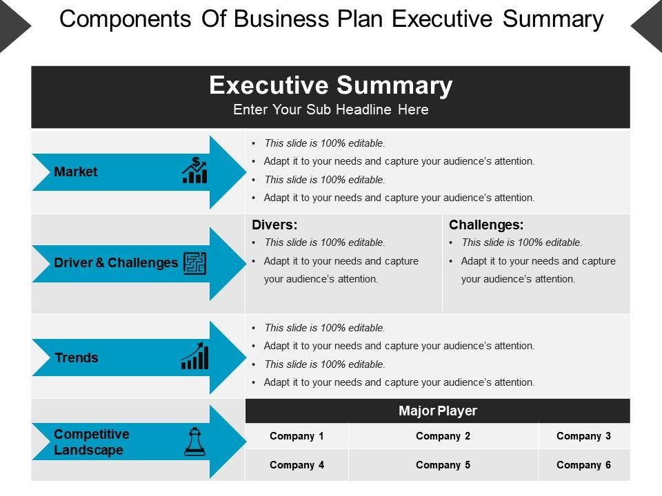 Executive Summary Template 42
