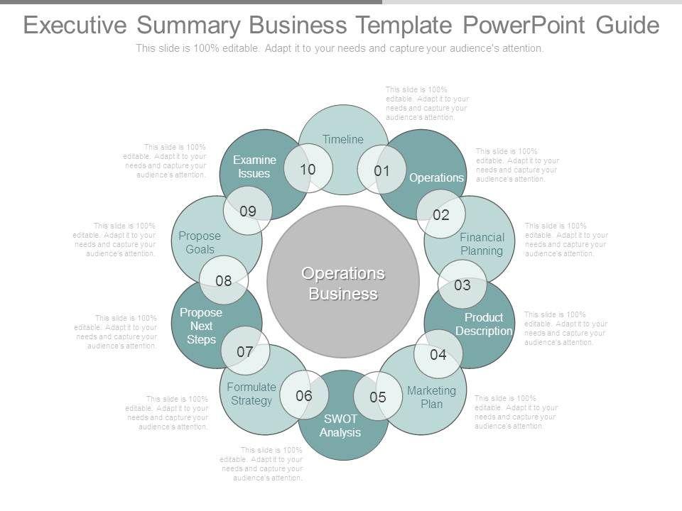 Executive Summary Template 33