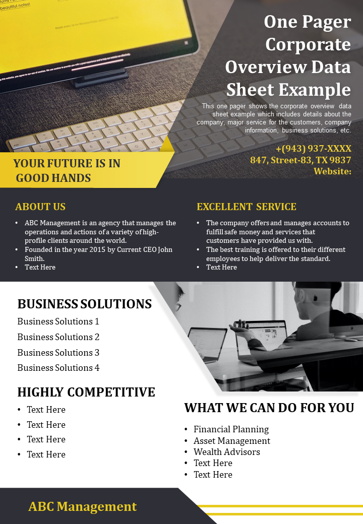 Corporate Overview Data Sheet Example Presentation Report Infographic