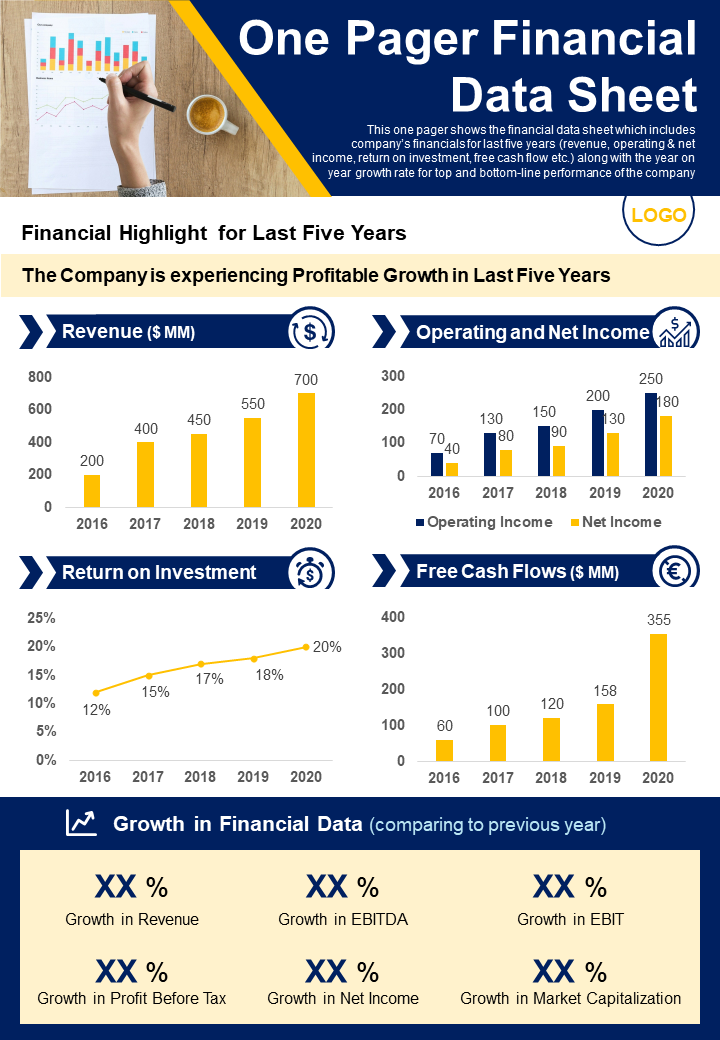 One Pager Financial Data Sheet Presentation Report Infographic