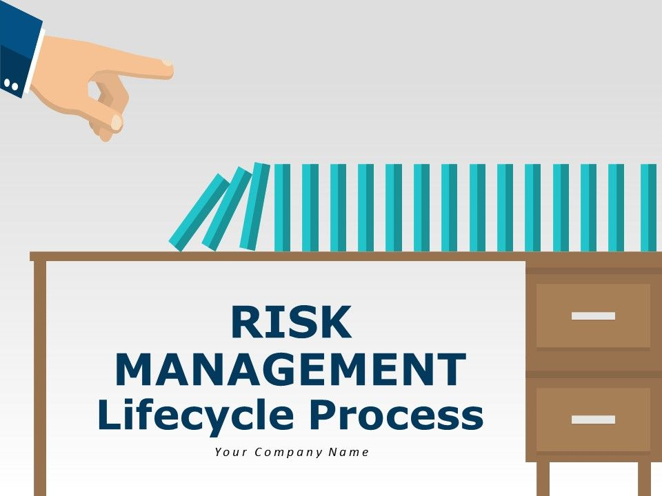 Risk Management Lifecycle Process
