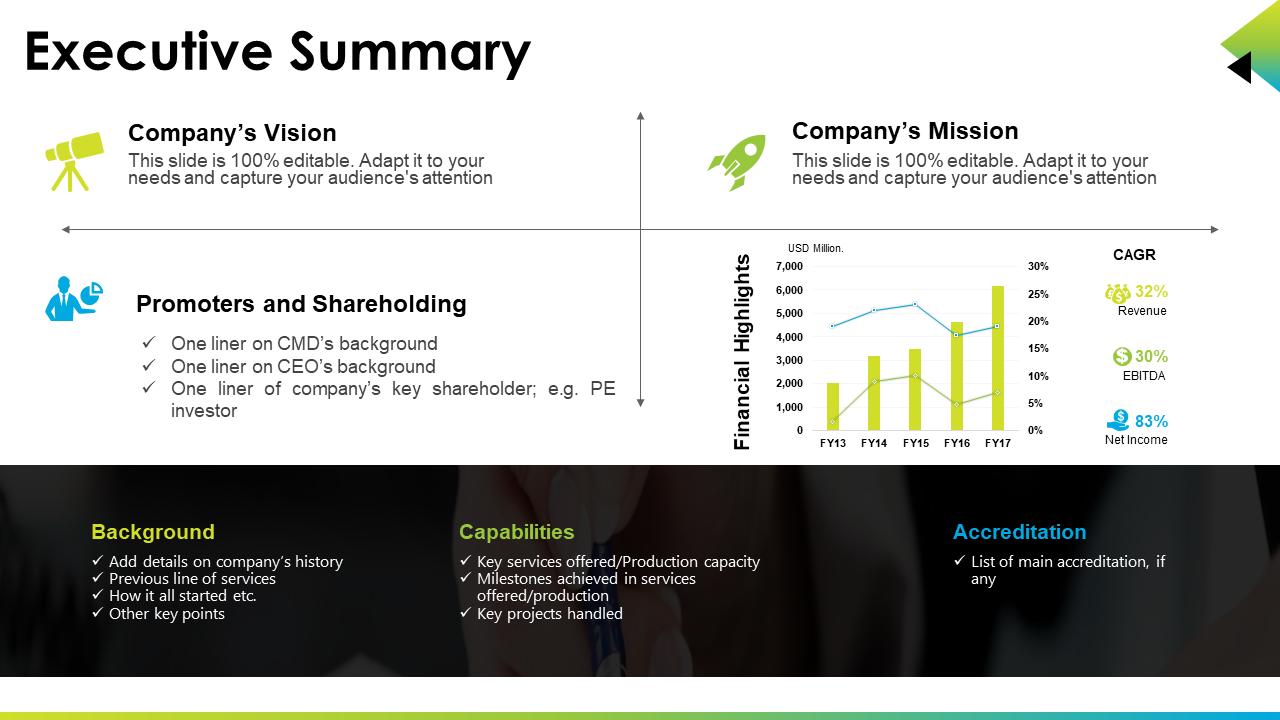 Executive Summary PPT Presentation