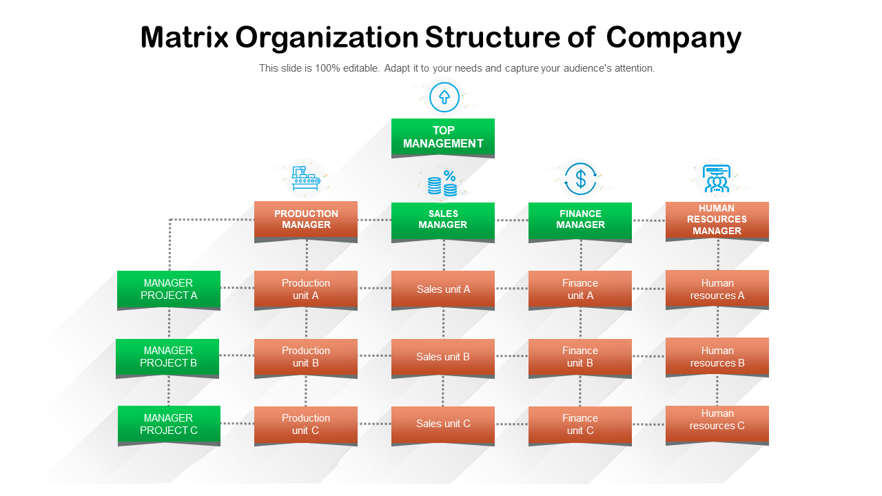 Matrix Organization Structure Of Company