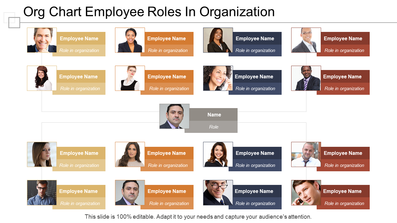 Org Chart Employee Roles In Organization