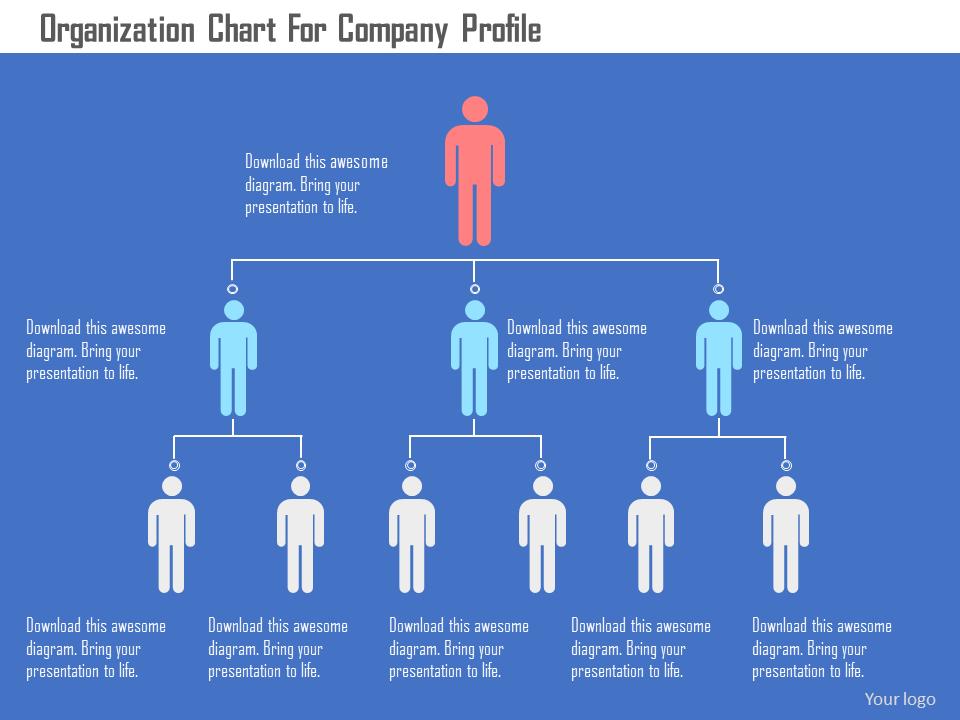 Organization Chart For Company Profile