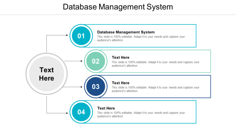 Database Management System PPT PowerPoint Presentation