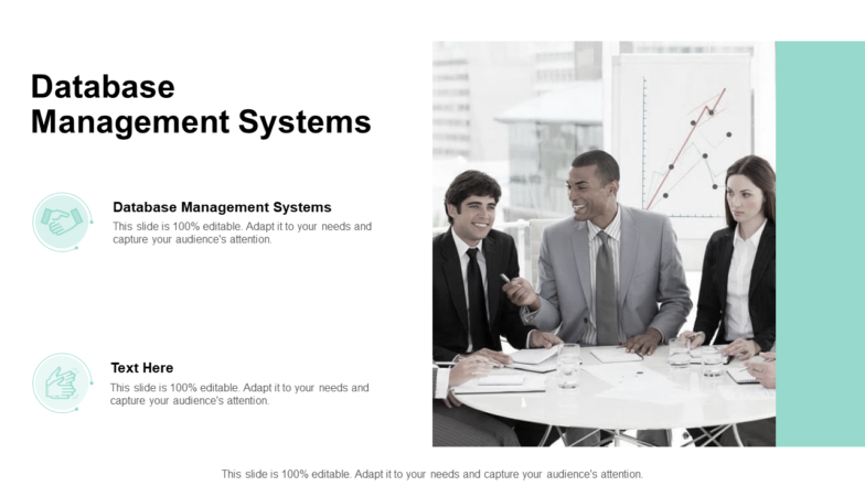 Database Management Systems PPT PowerPoint Presentation