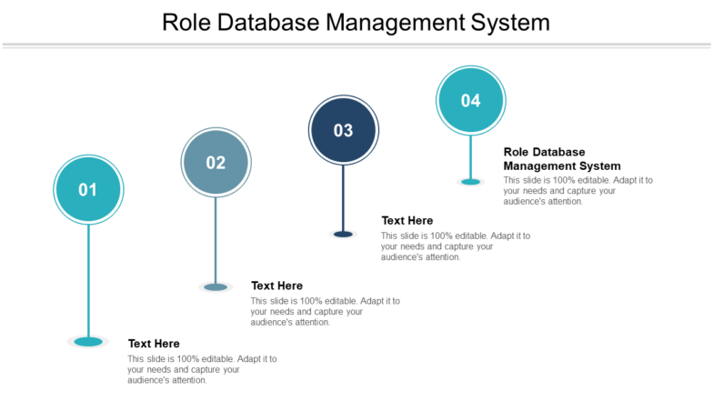 Role Database Management System PPT PowerPoint Presentation