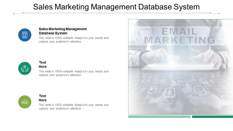 Sales Marketing Management Database System PPT PowerPoint