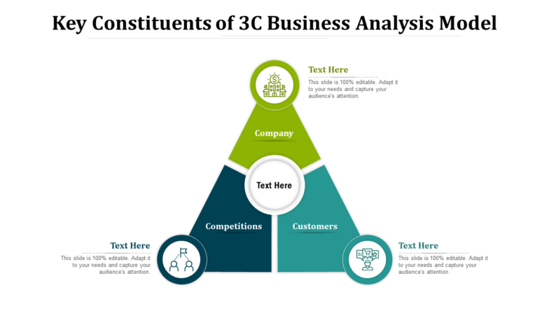 Key Constituents Of 3c Business Analysis Model