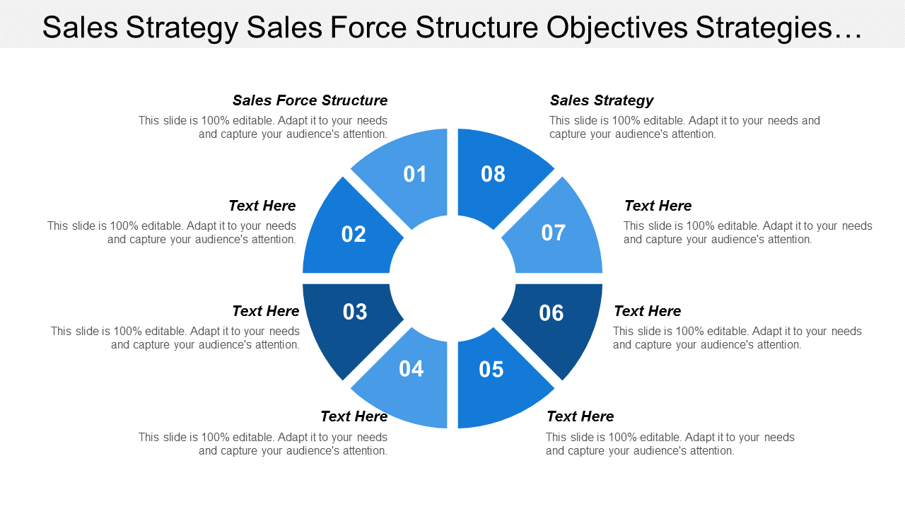 Sales Strategy Sales Force Structure PowerPoint Slides