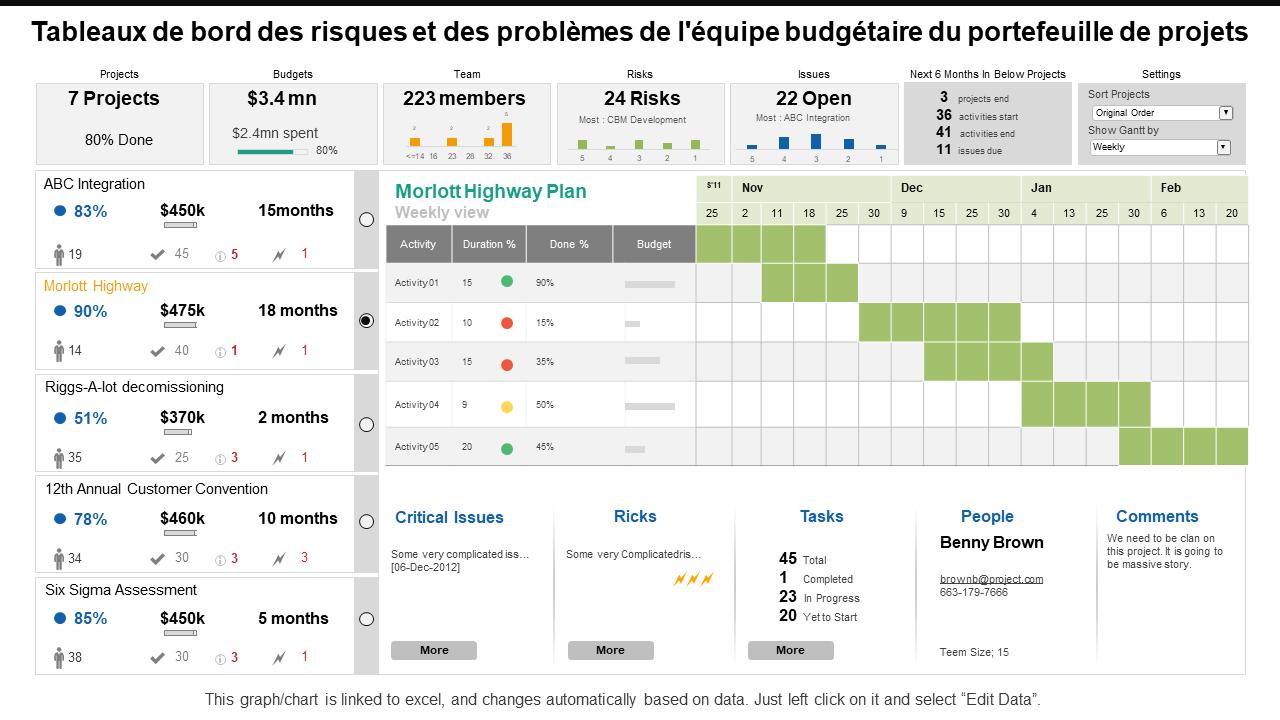 Tableaux de bord des risques et des problèmes de l'équipe budgétaire du portefeuille de projets